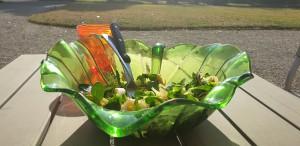 un party di colore , predominanza vegetale e verde scuro + 2 uova e olio extra v + aceto di mele e balsamico = totale alcalinizzante